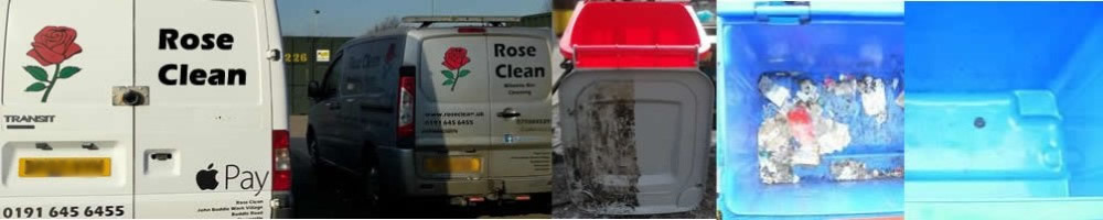 /images/project/Rose-Clean.jpeg.jpg